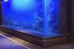 Aqua-space-aquarium-custom-FILEminimizer