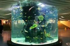 Aquarium-akrilik-untuk-air-tawar-FILEminimizer