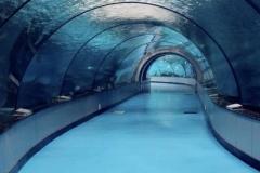 Aquarium-bawah-air-murah-harga-bersahabat-akrilik-FILEminimizer