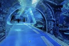 Aquarium-bawah-tanah-FILEminimizer