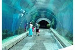 Aquarium-besar-raksasa-murah-berkualitas-terbaik-FILEminimizer