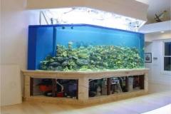 Aquarium-dari-akrilik-dengan-bentuk-custom-FILEminimizer