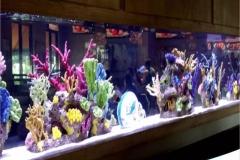 Aquarium-hotel-dan-cafe-FILEminimizer
