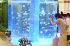 Aquarium-mall-berkualitas-dan-custom-bentuk-FILEminimizer