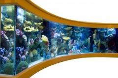 Aquarium-murah-untuk-hotel-dan-restoran-FILEminimizer