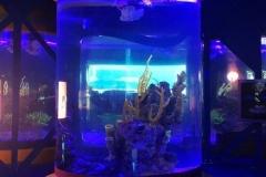 Aquarium-pertunjukan-ikan-bentuk-tabung-FILEminimizer