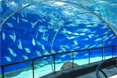 Aquarium-super-besar-untuk-restoran-bawah-air-FILEminimizer