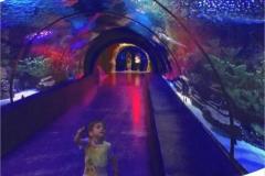 Big-aquarium-akrilik-berkualitas-FILEminimizer