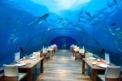 Jasa-Pembuatan-Giant-aquarium-untuk-restoran-FILEminimizer