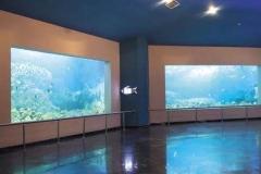 Jasa-pembuatan-Aquarium-bawah-tanah-FILEminimizer