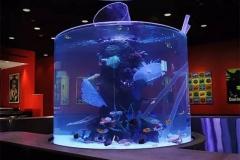 Jasa-pembuatan-Aquarium-dengan-ukuran-khusus-FILEminimizer