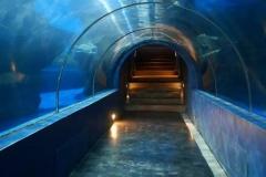 Jasa-pembuatan-Aquarium-ikan-hiu-FILEminimizer
