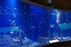 Jasa-pembuatan-Aquarium-raksasa-FILEminimizer