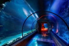 Jasa-pembuatan-akuarium-bawah-laut-seperti-di-bali-FILEminimizer
