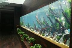 Jasa-pembuatan-aquarium-dengan-harga-bersahabat-FILEminimizer