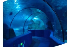 Jasa-pembuatan-seperti-dei-jakarta-aquarium-FILEminimizer