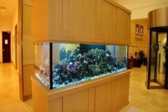 aquarium-besar-harga-bersahabat-FILEminimizer