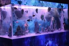 aquarium-ikan-hias-murah-segala-ukuran-FILEminimizer
