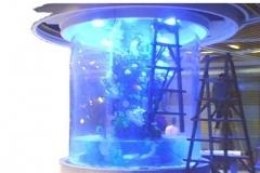 aquarium-tabung-besar-berkualitas-FILEminimizer