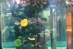 beli-aquarium-akrilik-ukuran-besar-berkualitas-FILEminimizer