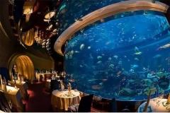 Akuarium-besar-pertunjukan-ikan-untuk-hotel-dan-resto-FILEminimizer