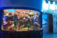Supplier-Aquarium-berbagai-bentuk-dan-ukuran-FILEminimizer