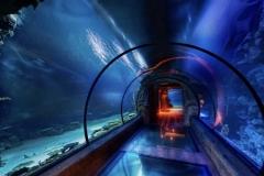 Tunnel-aquarium-custom-ukuran-dan-tinggi-FILEminimizer