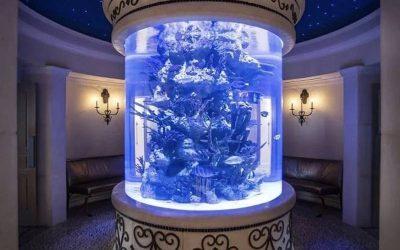Beli Aquarium murah akrilik berkualitas – CALL/WA: 081803215590