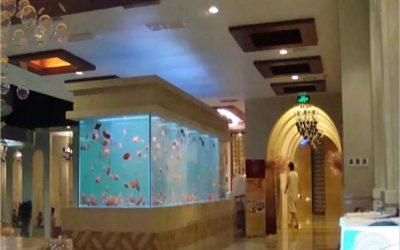 Bentuk custom aquarium dengan harga bersahabat – CALL/WA: 081803215590