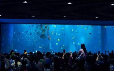 Harga aquarium custom berkualitas – CALL/WA: 081803215590